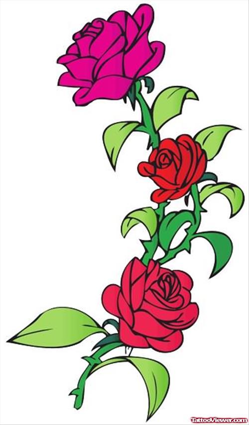 500x854 Rose Tattoos Designs Tattoo