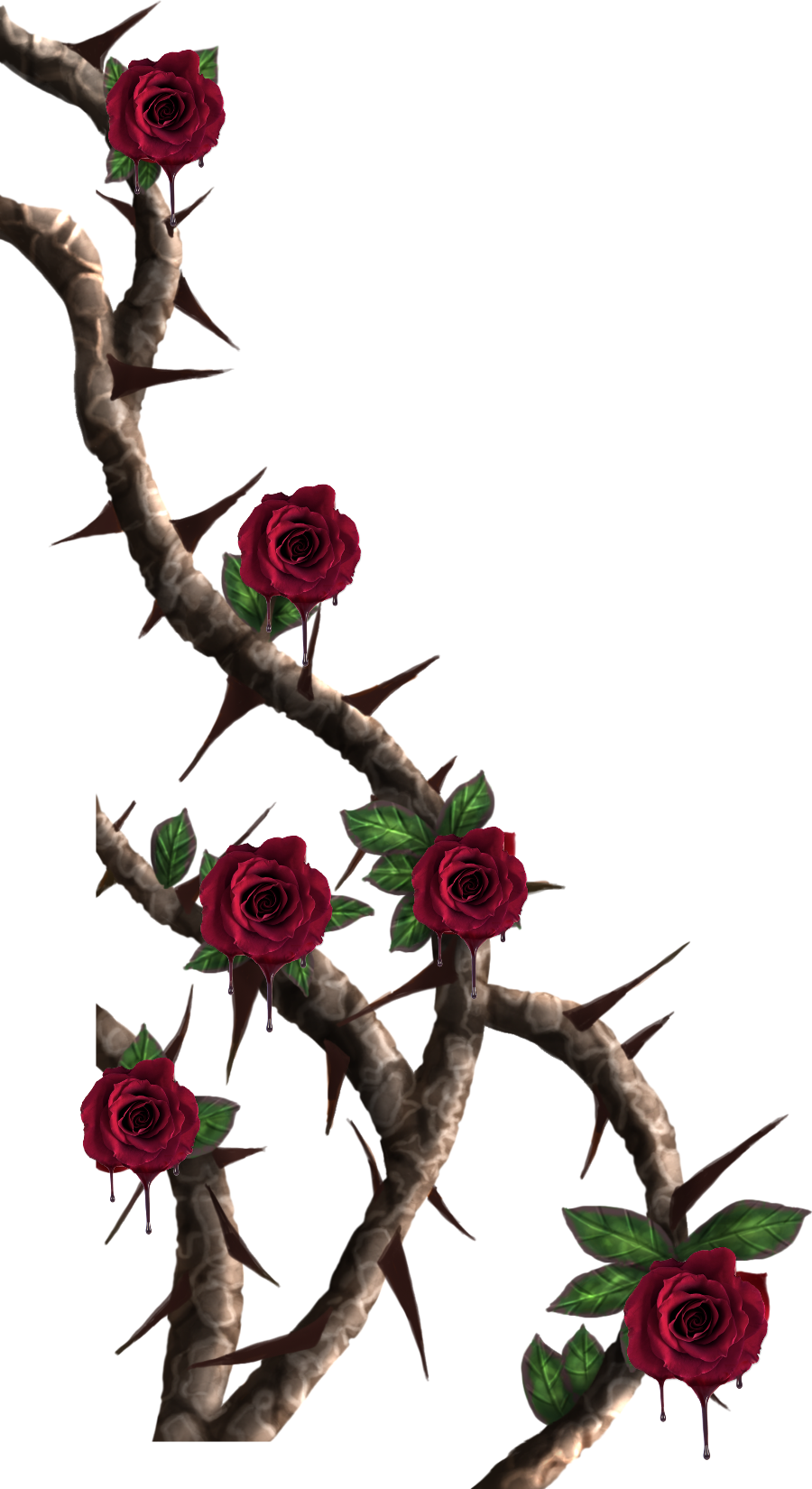 Rose Vine Drawing | Free download on ClipArtMag