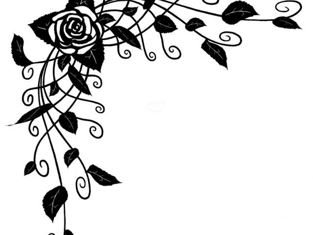 Rose Vine Drawing Free Download On Clipartmag