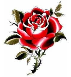 240x260 red rose with thorns tattoos designs rose thorns, red rose