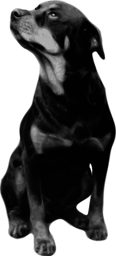 228x500 Photorealistic Vector Drawing Of Rottweiler