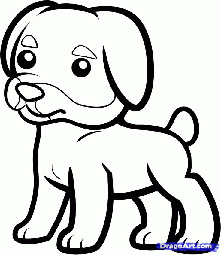 736x849 Colorful Pictures Of Rotties How To Draw A Rottweiler For Kids