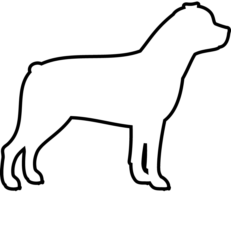 800x800 Collection Of Free Rottweiler Drawing Easy Download On Ui Ex