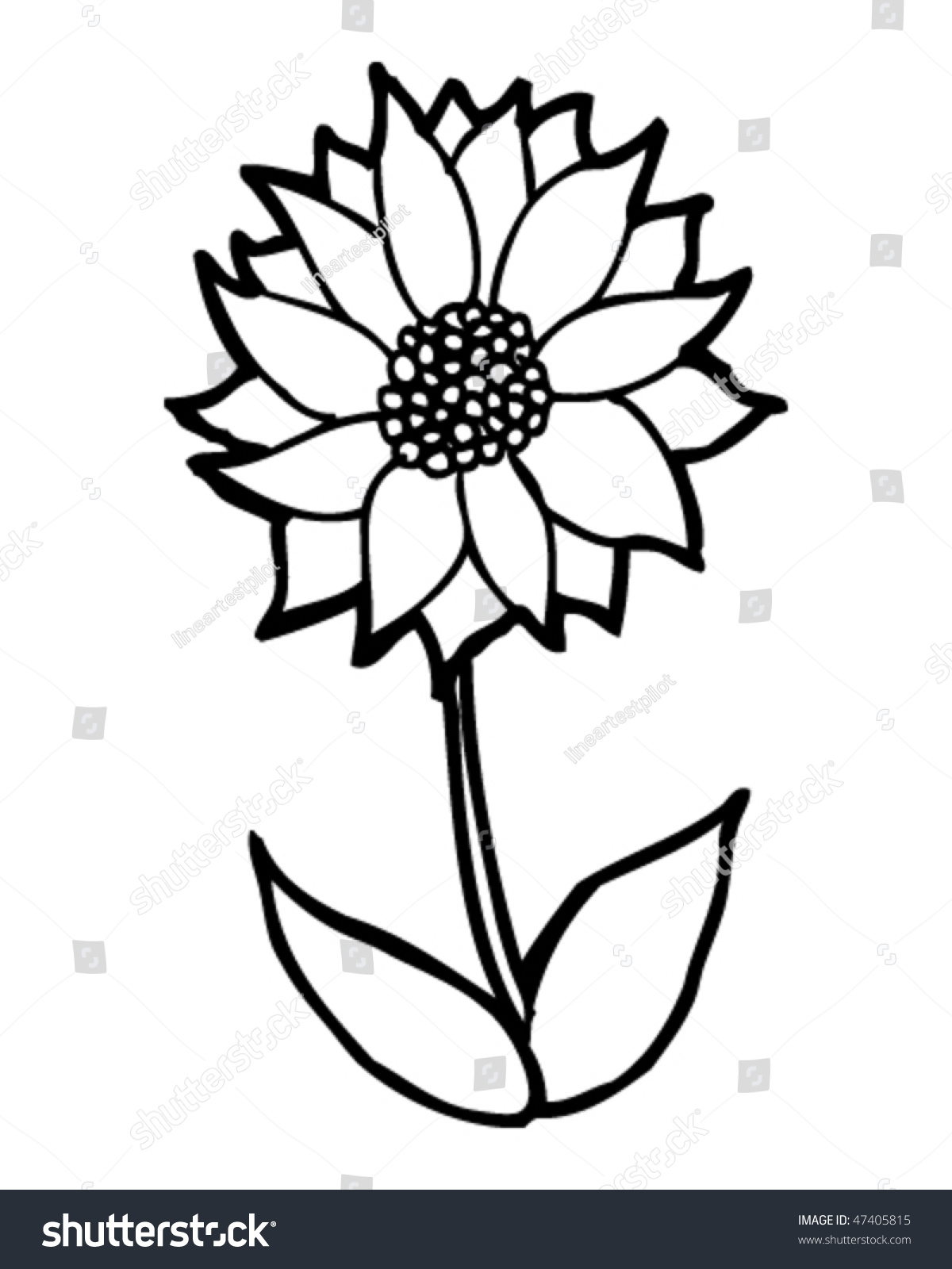 1200x1600 Cartoon Drawing Flowers Cartoon Drawing Flower Stock Vector