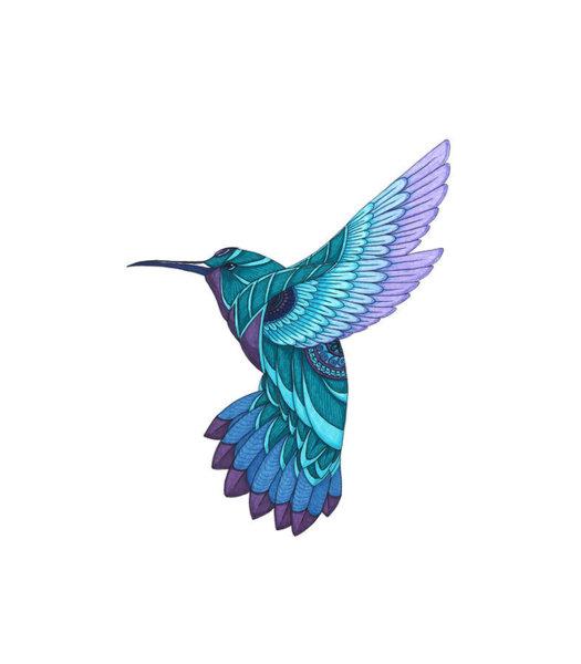 525x600 Hummingbird Drawing Art