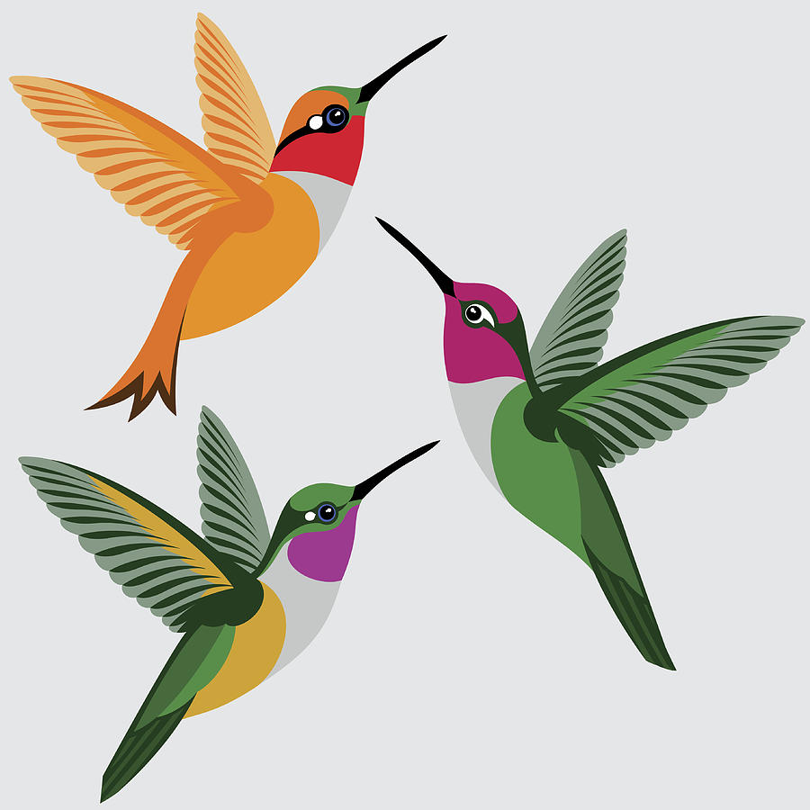 900x900 Hummingbirds Set