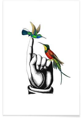 267x386 Buy Hummingbird Drawings And Illustrations Online Juniqe Uk
