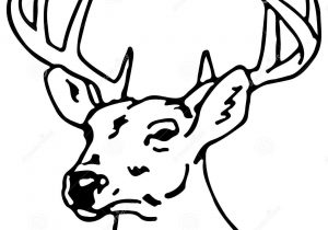 300x210 drawing a reindeer how to draw rudolph the red nosed reindeer