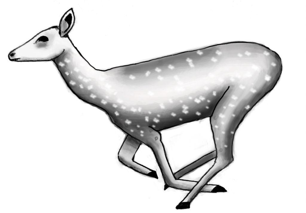 1024x713 Running Deer