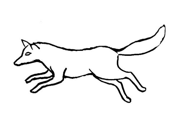 600x430 Fox Coloring Pages