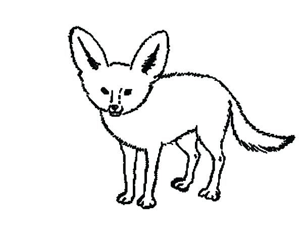 600x471 Kit Fox Running Scared Coloring Pages For Adults Animals Online