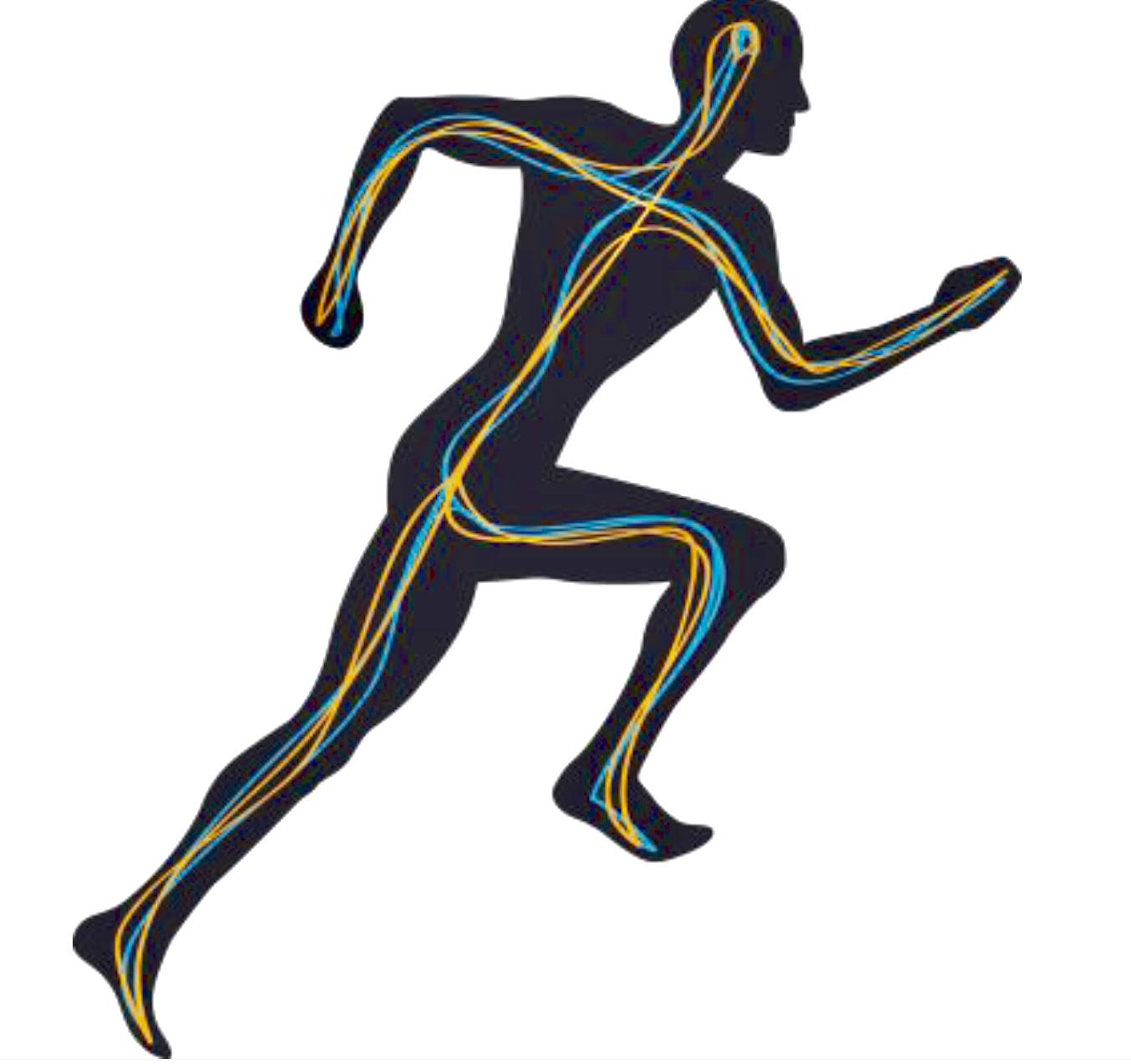 1354x1274 Run Fundamentals Posture Breathing Leapfrog Track Practice