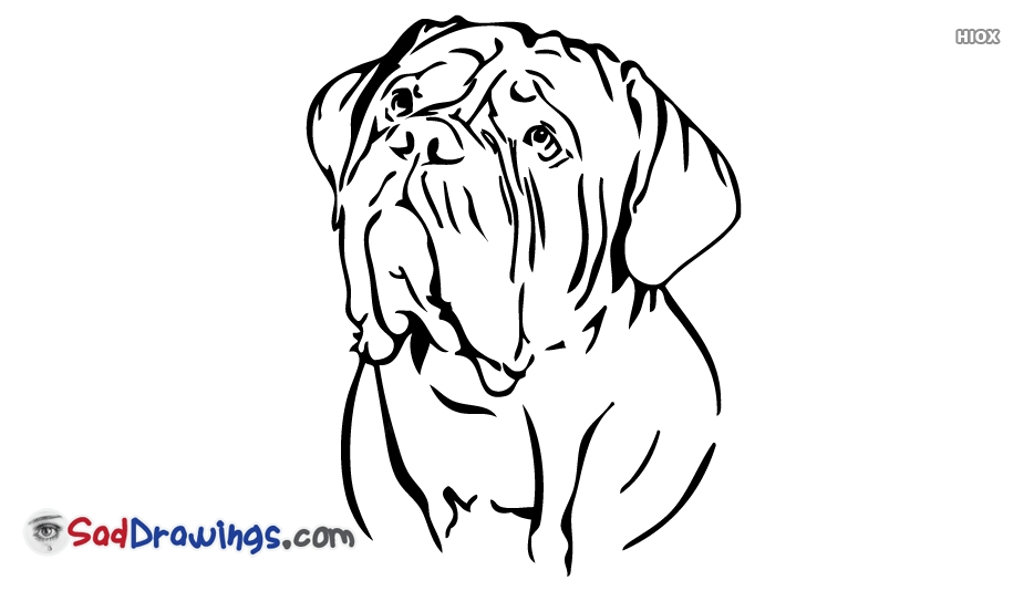 Sad Dog Drawing | Free download best Sad Dog Drawing on ClipArtMag com