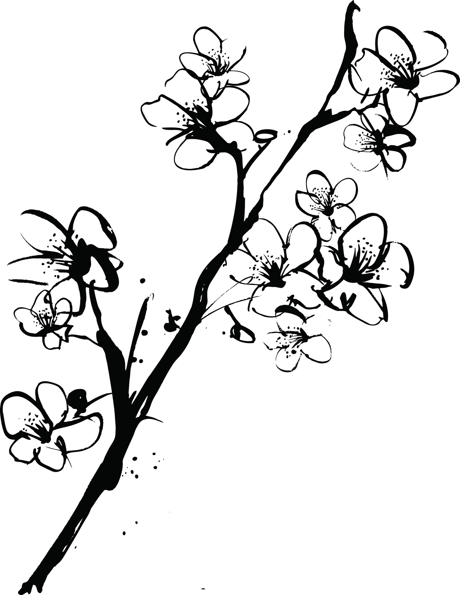 1484x1919 Cherry Blossom Tree Clipart Black And White Clip Art Images