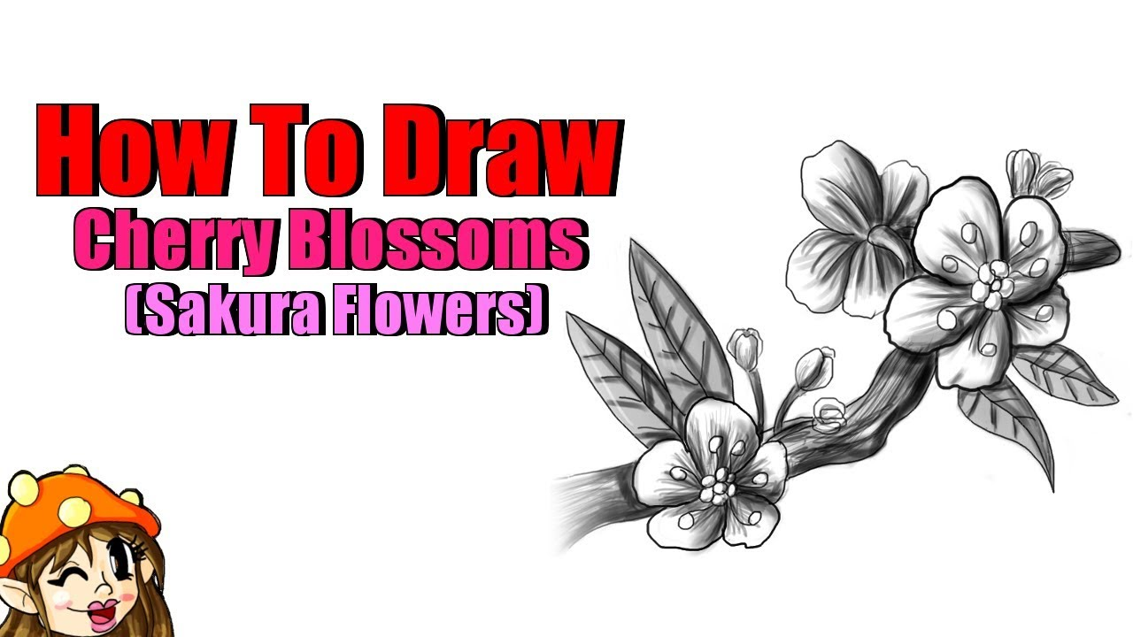 1280x720 How To Draw Cherry Blossoms, Tutorial!