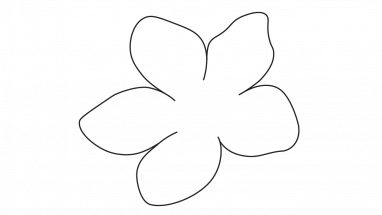 382x215 Blossom Drawing Draw Transparent Png Clipart Free Download