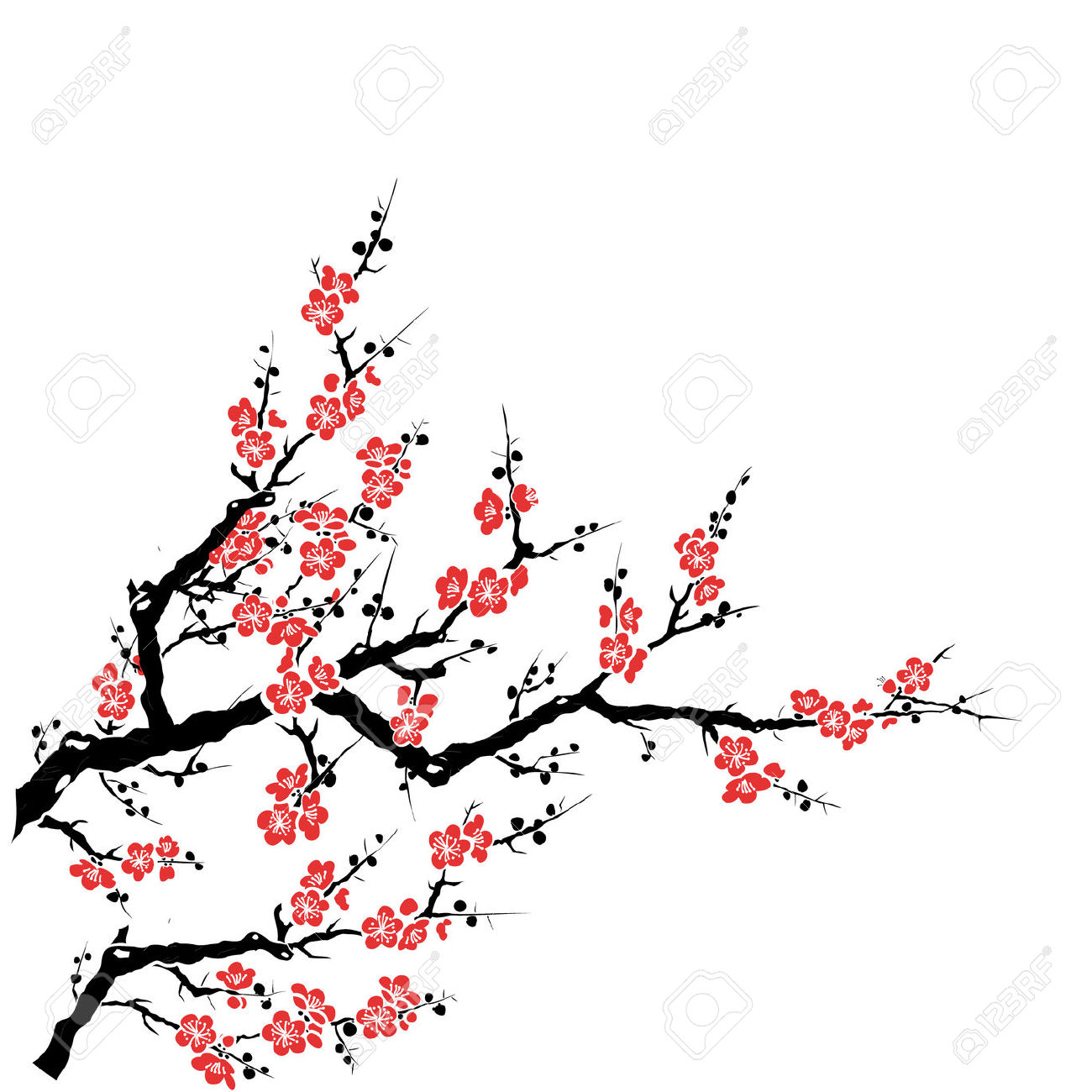 1300x1300 Cherry Blossom Clipart Flower Drawing