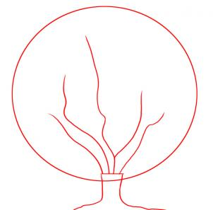 302x297 How To Draw How To Draw A Cherry Tree
