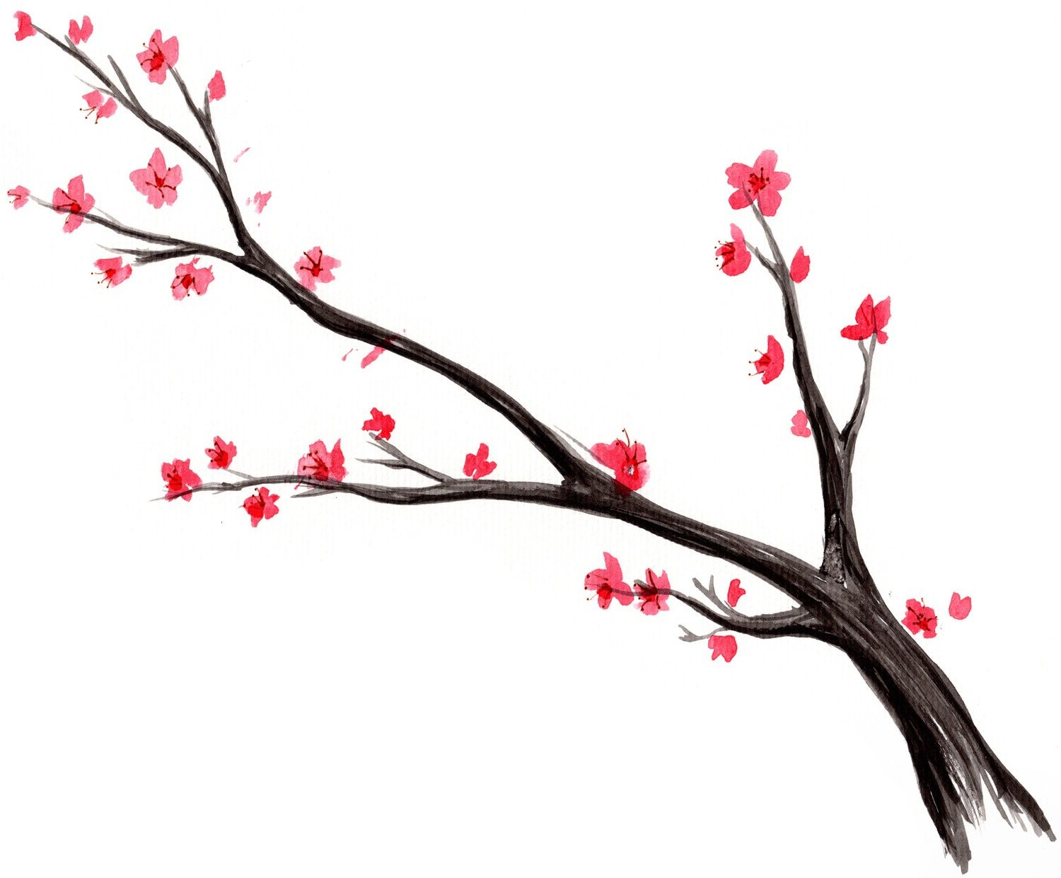 1500x1241 Add Birds Later Japanese Cherry Blossom Tree Watercolor Print