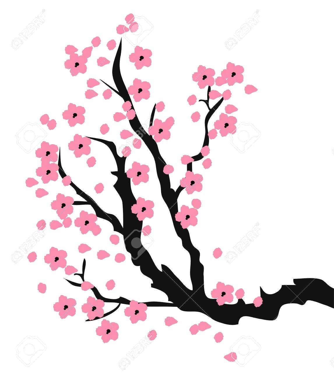1146x1300 Cherry Blossom Tree Drawing Outline Stock Vectors Vector Clip Art