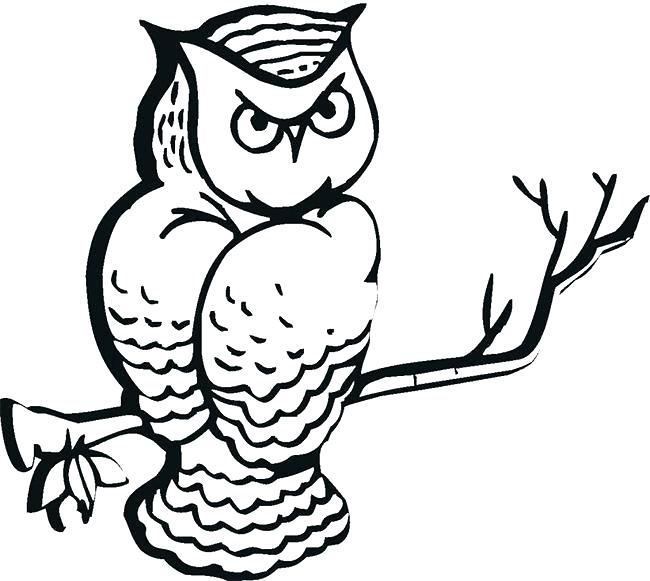 Scary Owl Drawing | Free download on ClipArtMag