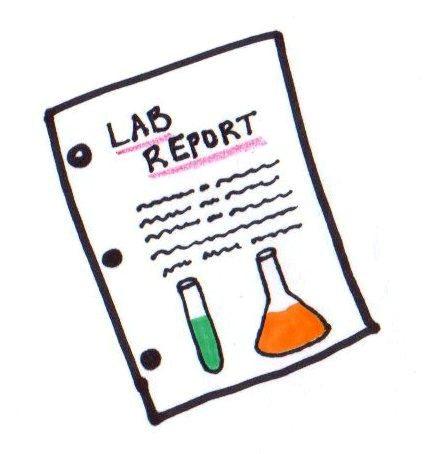 428x454 skin lab wednesday in class bring lab books!!!!! mrs derochers