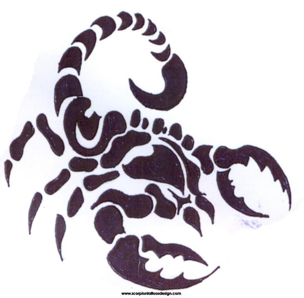 Scorpion Tattoo Drawing Free Download Best Scorpion Tattoo Drawing