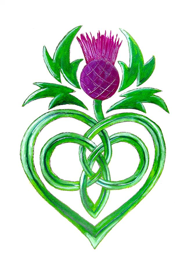 641x900 Celtic Thistle Painting