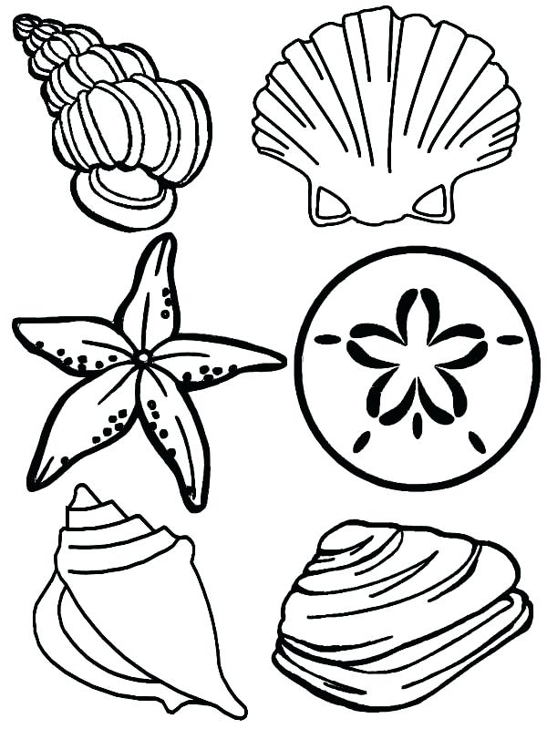 600x800 sea plants coloring pages sea plants coloring pages realistic eye