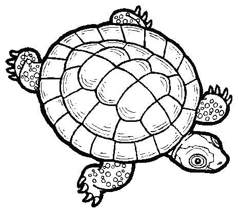 464x416 sea turtle outline sea turtles clip art sea turtle outline drawing