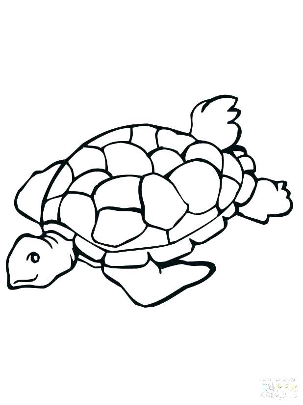 618x824 Little Sea Turtle Color Illustration Cute Sea Turtle Coloring Page