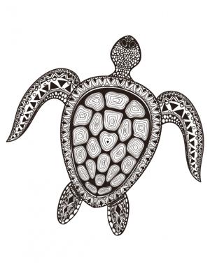 300x388 Sea Turtle Coloring