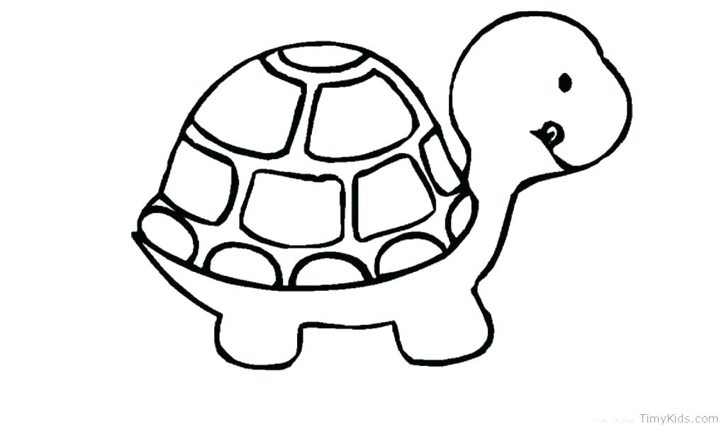 Sea Turtle Drawing Color | Free download best Sea Turtle ...