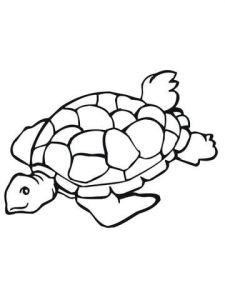 225x300 Sea Turtles Coloring Beautiful Image Sea Turtle To Color Unique