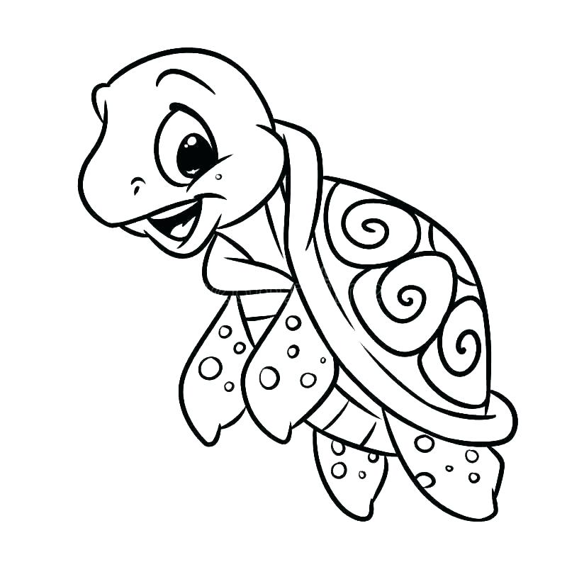 800x800 Coloring Pages Draw A Turtle Colouring Pages Baby Turtles Coloring