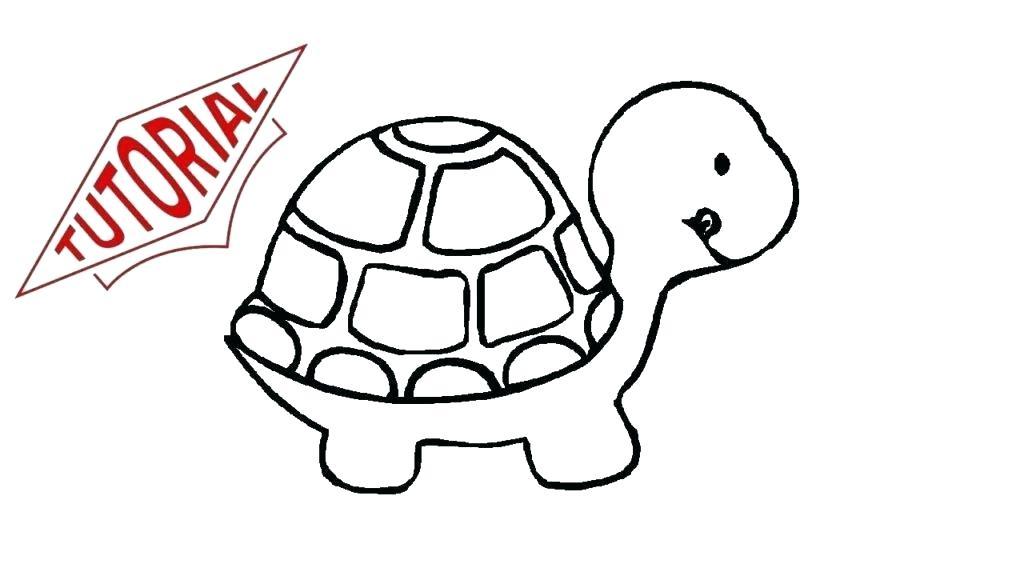 1024x576 Draw A Turtle Easy