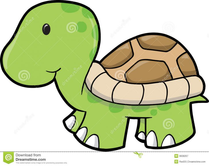 20 Fantastic Ideas Sea Turtle Drawing With Colour
