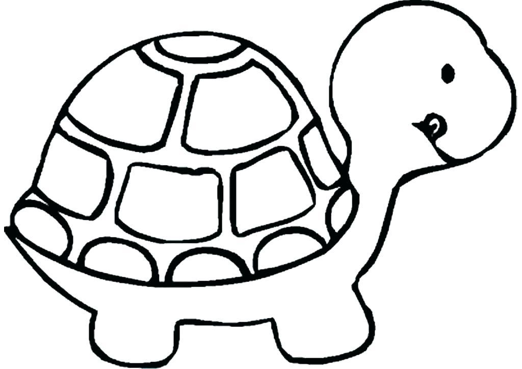 1024x724 Drawings Of A Turtle Ninja Turtle Drawing Step