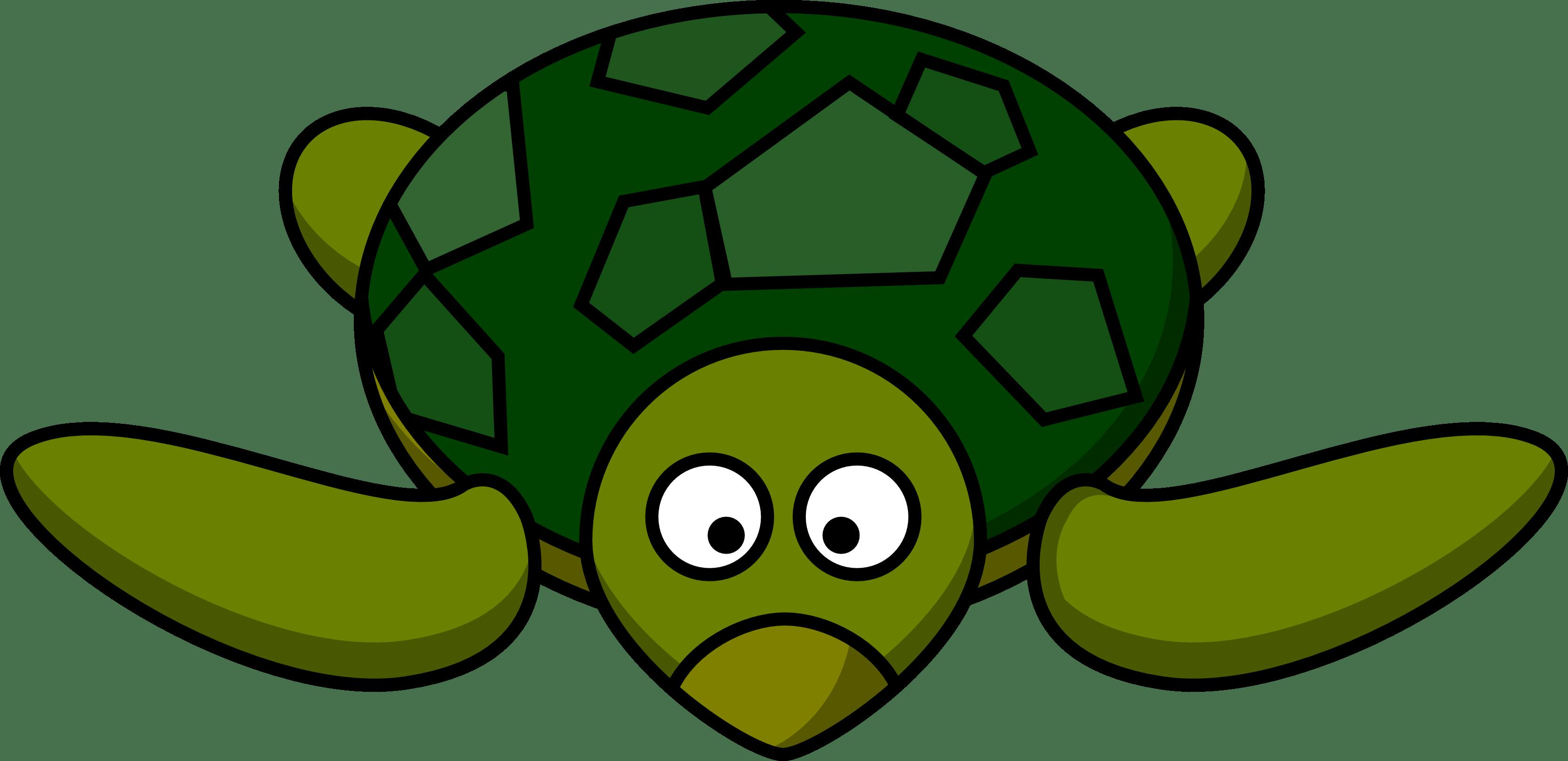 Sea Turtle Drawing Tumblr