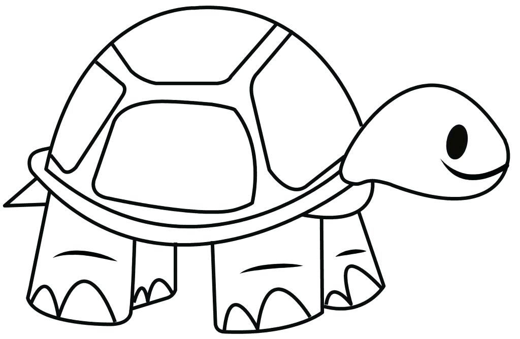 Sea Turtle Drawing Tutorial