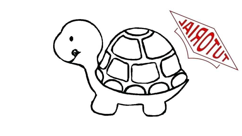 1024x576 Draw Turtle Draw Triangle Turtle Python