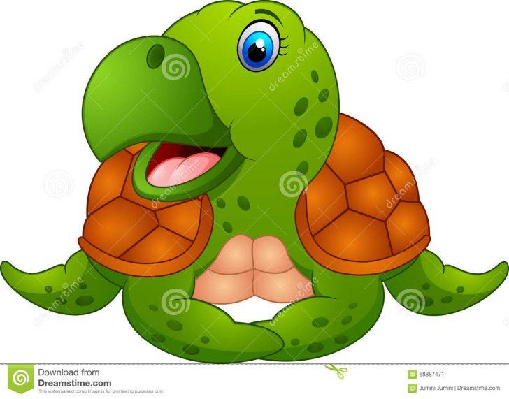 728x571 Turtle Drawing Code Program Tutorial Cute Sea Easy I Fertility