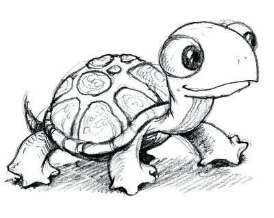 400x318 Turtles Drawing Draw Sea Turtle Sea Turtles Drawing Easy