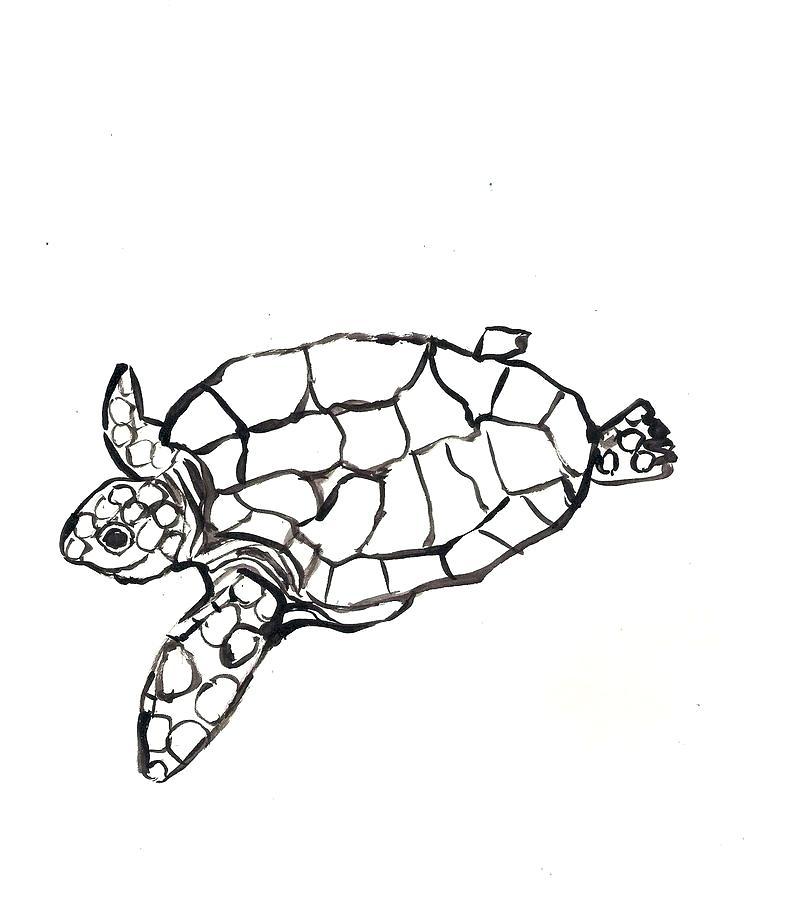 796x900 how do you draw a sea turtle draw sea turtle draw realistic sea