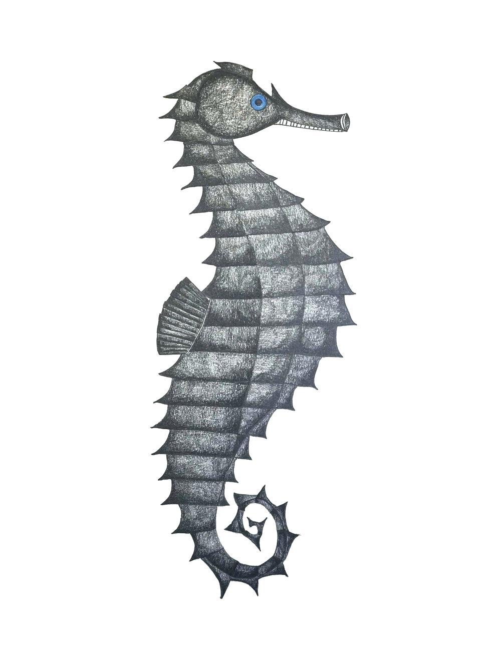 1000x1294 Drawing A Seahorse Seahorse Cartoon Seahorse Drawing Step