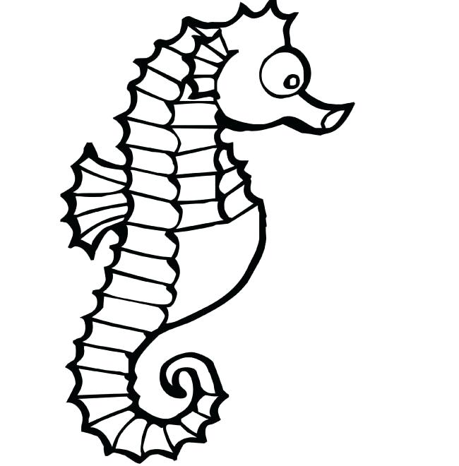 650x660 seahorse outline drawing of a seahorse seahorse sketch