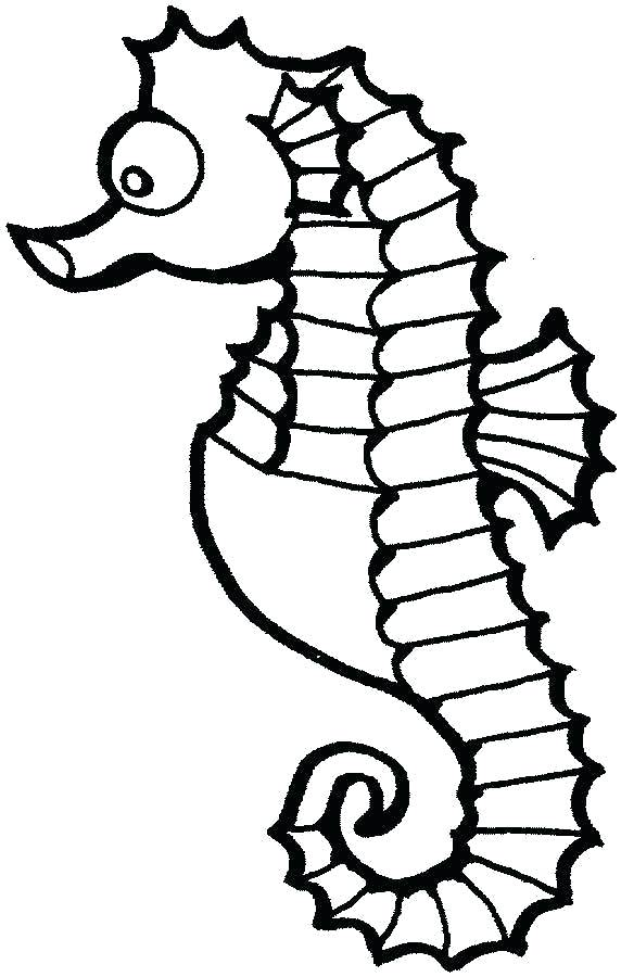 572x900 coloring seahorse seahorse drawing co seahorse coloring picture