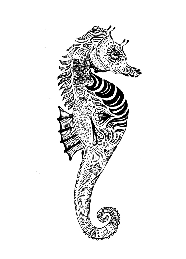 600x835 Paisley Seahorse