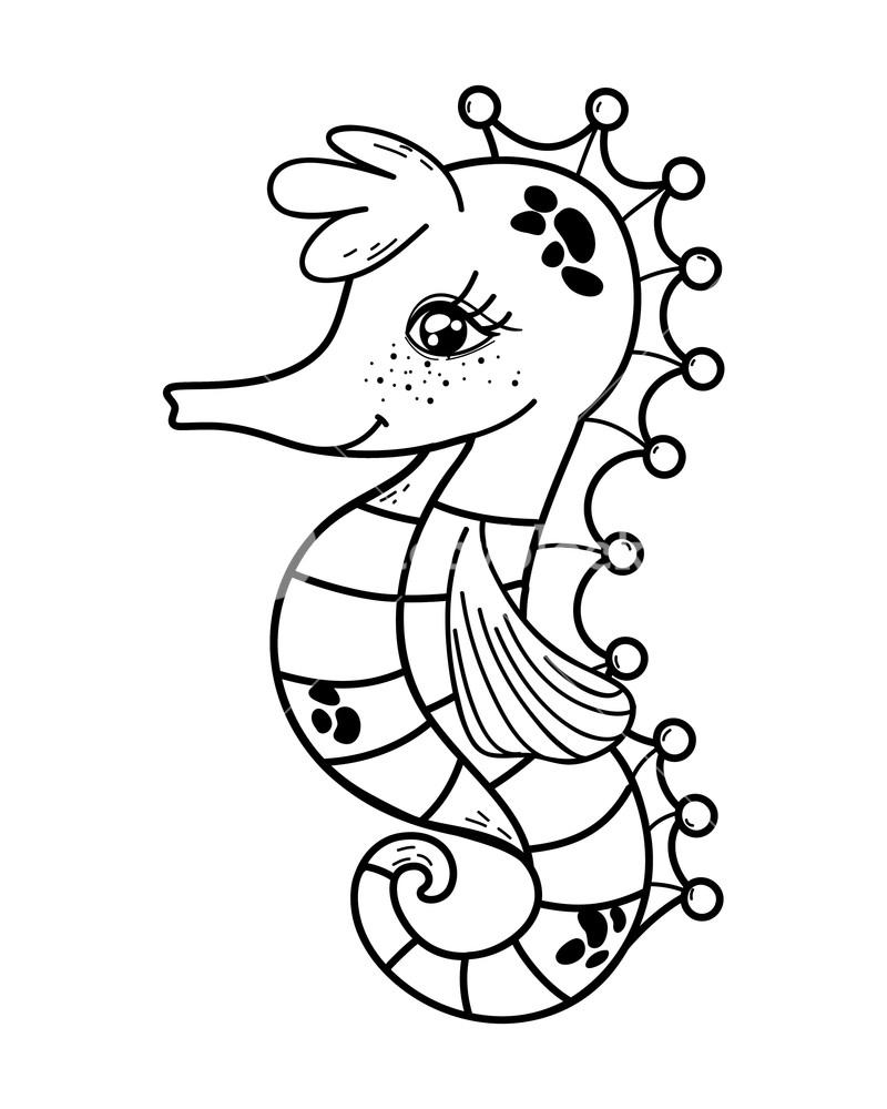 800x1000 Outline Cute Seahorse Tropical Sea Animal Vector Illustration