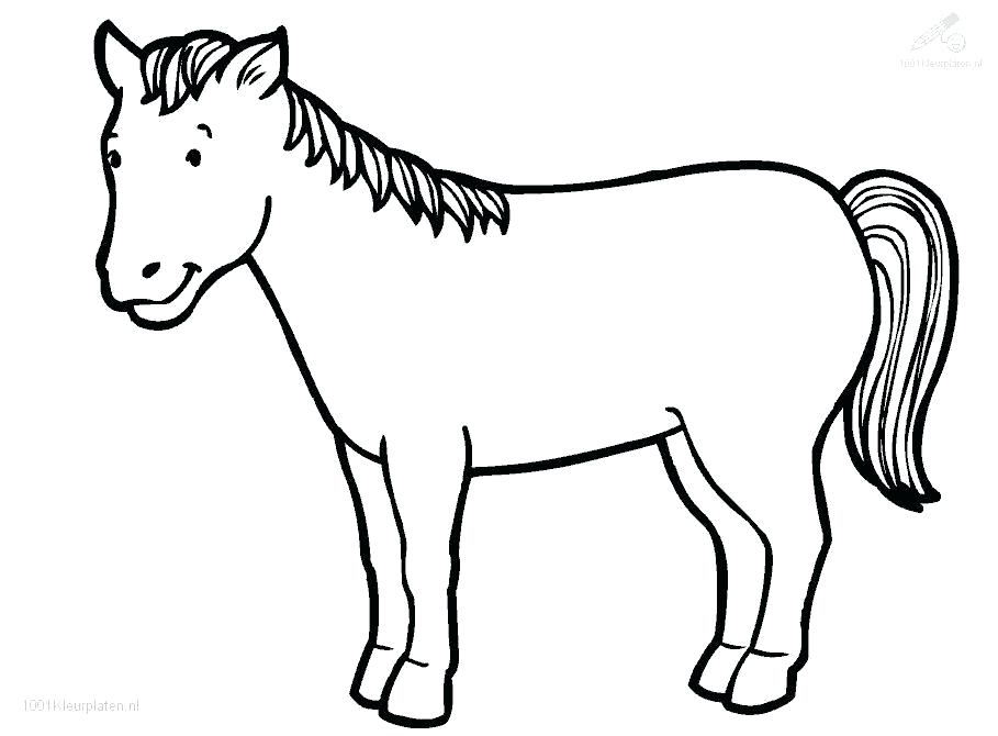 909x670 Astounding Inspiration Horse To Colour Drawing Outline At Free